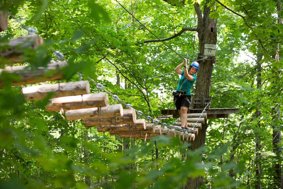 Treetop Trekking participant cross between trees