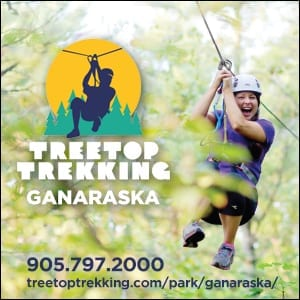 """cobourg, cobourg tourism, experience cobourg, website, banner, digital ad, experience, adventure, attraction, things to do cobourg, treetop trekking, treetop trekking ganaraska"